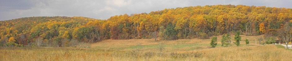 cropped-Fall-2010-012.jpg